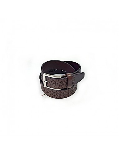 Styled Brown Belt